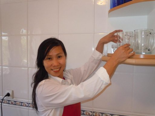 Domestic Service Agency
